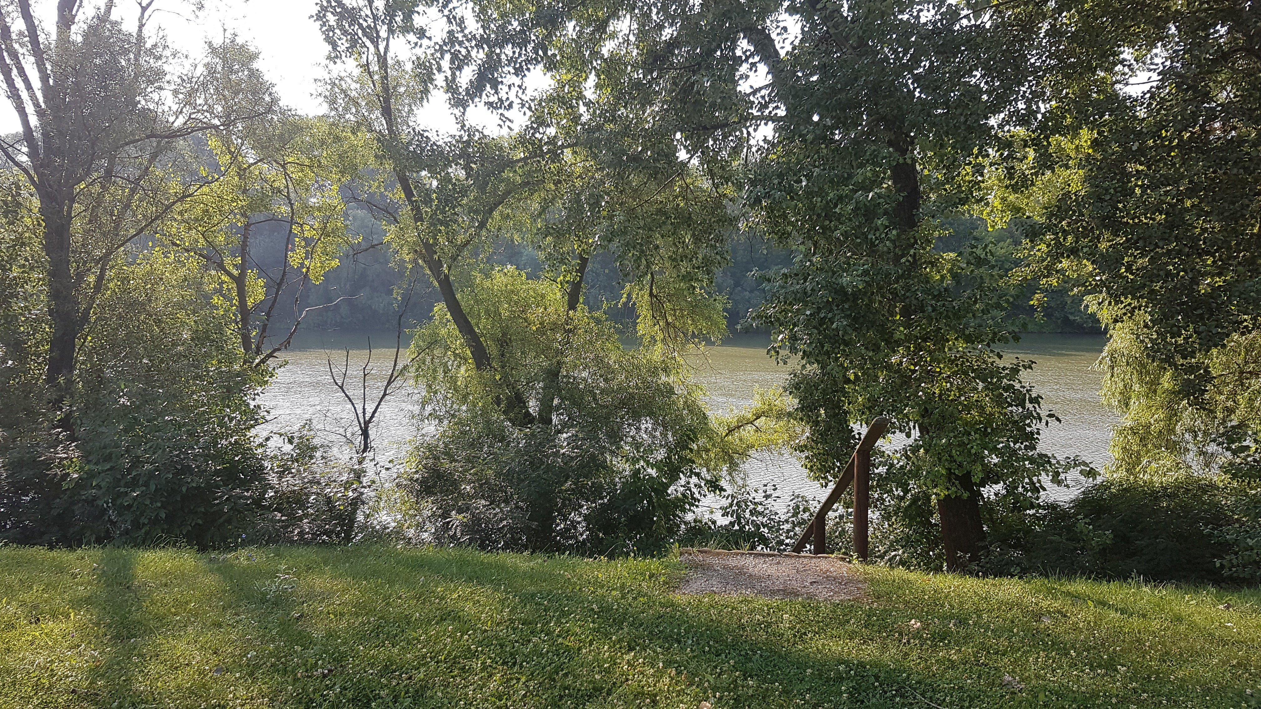 Tisza river behind the trees - itstartswithacoffee.com #Tisza #Tisza-river
