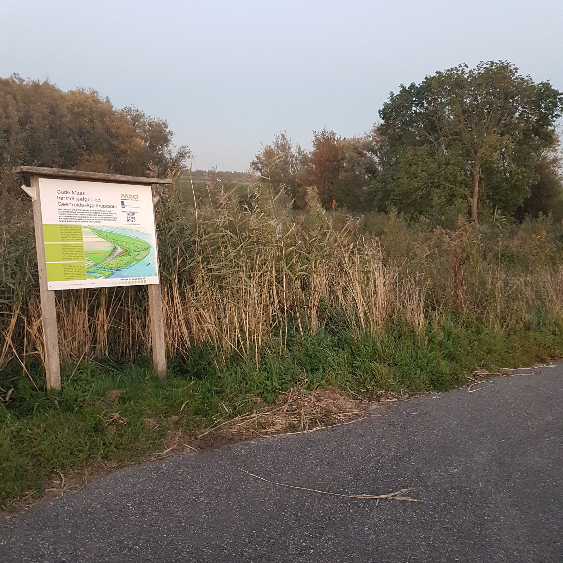 The information board hiding the geocache and the view behind it - itstartswithacoffee.com #geocache #geocaching