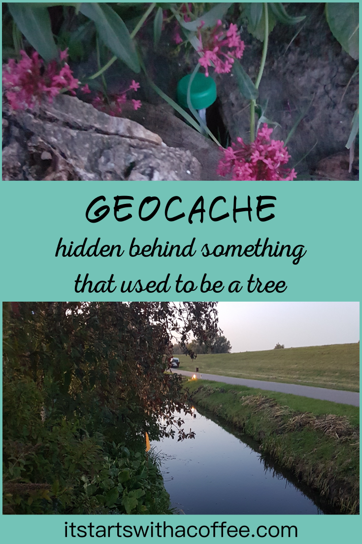 Geocache hidden behind something that used to be a tree - itstartswithacoffee.com #geocache #geocachingNL #geocachingNetherlands #geocache #petling #PETpreform