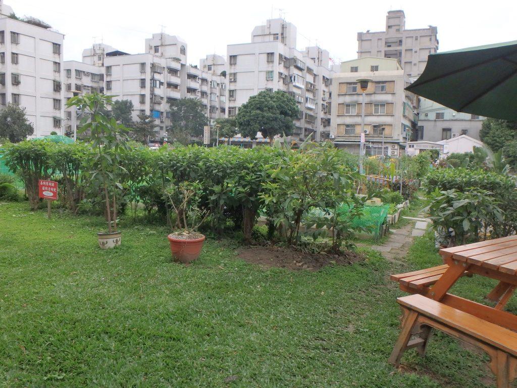 A little garden between the big apartments - itstartswithacoffee.com